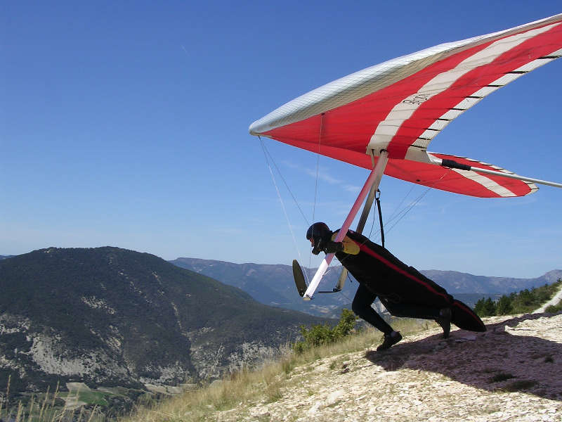 Competition hang glider